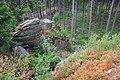 Harzwanderung Oberharz um Braunlage - Wurmberg - An und um die Scherstorklippe - panoramio (4).jpg