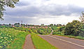 Heather geograph-3627882-by-Ben-Brooksbank.jpg