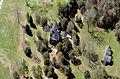 Heriot-Moise House Aerial.jpg