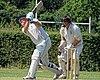 Hertfordshire County Cricket Club v Berkshire County Cricket Club at Radlett, Herts, England 032.jpg