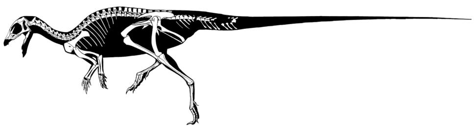 Hexinlusaurus multidens