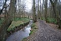 High Weald Way along the banks of the River Grom, East of High Rocks - geograph.org.uk - 1104182.jpg