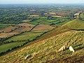 Hillside, Caer Caradoc - geograph.org.uk - 1006291.jpg