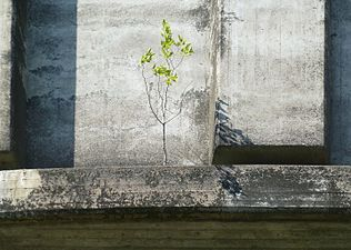 Hjulsta vandtårne 2012e.jpg