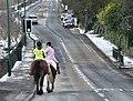 Horses on Mottram Old Road - geograph.org.uk - 1151851.jpg