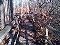 Hurricane Sandy caused damage at Great Swamp National Wildlife Refuge (NJ) (8164523802).jpg