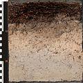 ISRIC monolith NL-013.jpg