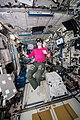 ISS-58 Anne McClain works inside the Columbus module (2).jpg