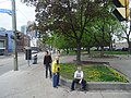 Images taken out a west facing window of TTC bus traveling southbound on Sherbourne, 2015 05 12 (91).JPG - panoramio.jpg