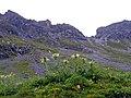 In der Nähe vom Lünersee - panoramio.jpg