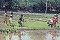 India-1970 095 hg.jpg