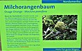 Informationstafel Röhrensee 65.jpg