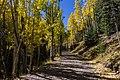 Inner Basin Trail No. 29 (29863906540).jpg