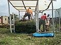 Instalation artisanale de compostage (protection contre la pluie et grillage pour garder le système ouvert (même endroit) (12210903865).jpg