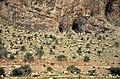 Iran - Fars - Kazerun - Tange Chogan - panoramio.jpg