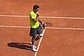 JM Del Potro - Roland-Garros 2012-IMG 3507.jpg