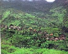 papua new guinea leahy