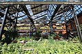 Jardins Rosa-Luxemburg à Paris le 13 août 2016 - 18.jpg