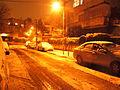 Jerusalen nevada 31.JPG