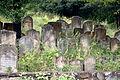 Jewish Cemetery Staryi Sambir 2008 01.jpg
