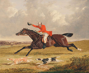 Foxhunting: Encouraging Hound