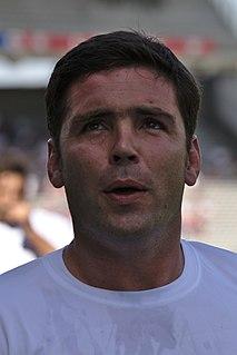 Dimitri Yachvili French rugby union player