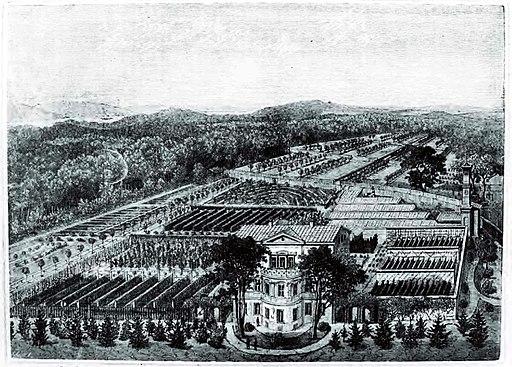 Königliche Gärtner-Lehranstalt Potsdam (um 1880) Deutsche Gärtnerzeitung 1883