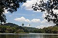 Kandy Lake - panoramio.jpg