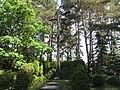 Karčiupis, Lithuania - panoramio (3).jpg