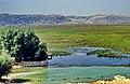 Karakuyu Sümpfe (Capali Gölü) bei Eldere (Türkei).jpg