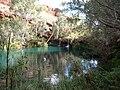 Karijini NP - Fern Pool.JPG