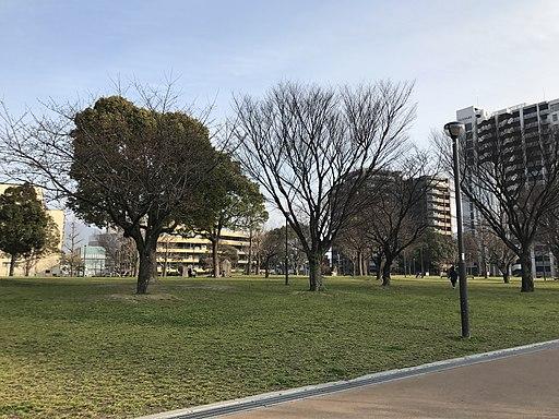 Katsuyama Park 20170330-3