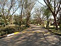 Keekorok 2013 - panoramio (18).jpg
