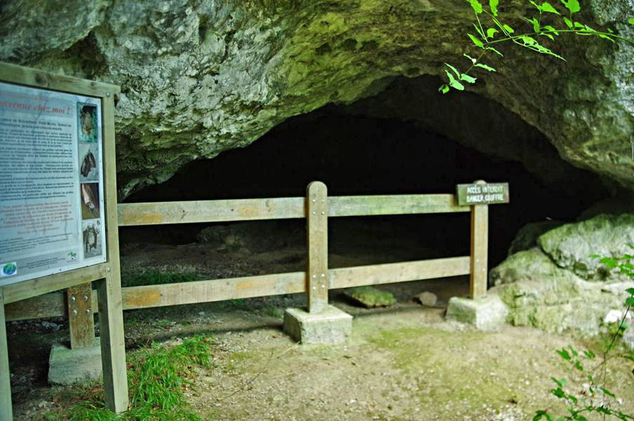 Grotte du Rocher de Ker: grotte ornée de gravures rupestres (paléolithique supérieur)