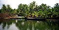 Kerala backwaters (4825309686).jpg
