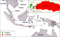 Komodo dragon distribution es.png
