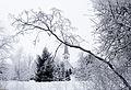 Kose kirik talvel.jpg