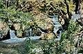 Kovada-Senke 19 05 1997 Karstquellen bei Suçatı.jpg
