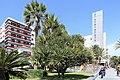 La Palma - Santa Cruz - Plaza de la Constitución + Yucca 01 ies.jpg