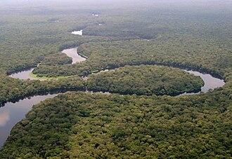 Iyaelima people - Lulilaka River in the Salonga National Park