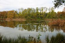 Parco naturale dei Lagoni di Mercurago