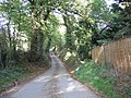 Lane at Town Ditch - geograph.org.uk - 274567.jpg