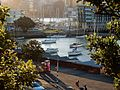 Late Afternoon by the Harbour (26475755960).jpg