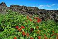 Lava Rock (Lane County, Oregon scenic images) (lanD0021).jpg