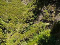 Levada 25 Fontes, Madeira, Portugal, June-July 2011 - panoramio (5).jpg