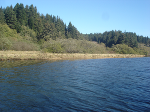 Little River (Humboldt County) - Image: Little River Estuary Upstream Of Highway 101