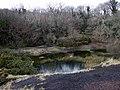 Llanfyrnach mine, view west - geograph.org.uk - 656885.jpg