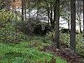Llyn Brianne, the Tywi arm, Powys - geograph.org.uk - 1066729.jpg