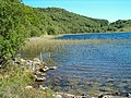 Lochan an Torrnalaich - geograph.org.uk - 184602.jpg
