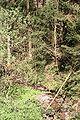 Loewenstein Bleichsee Abfluss 20070414 4.jpg
